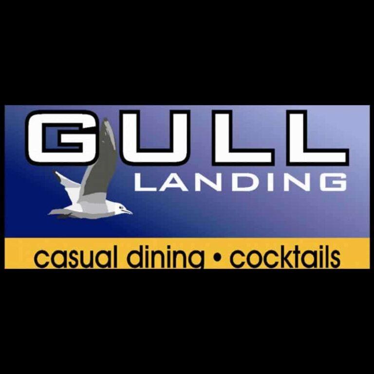 Gull Landing Pentwater