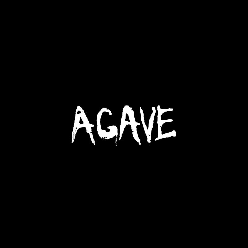 Agave Avon