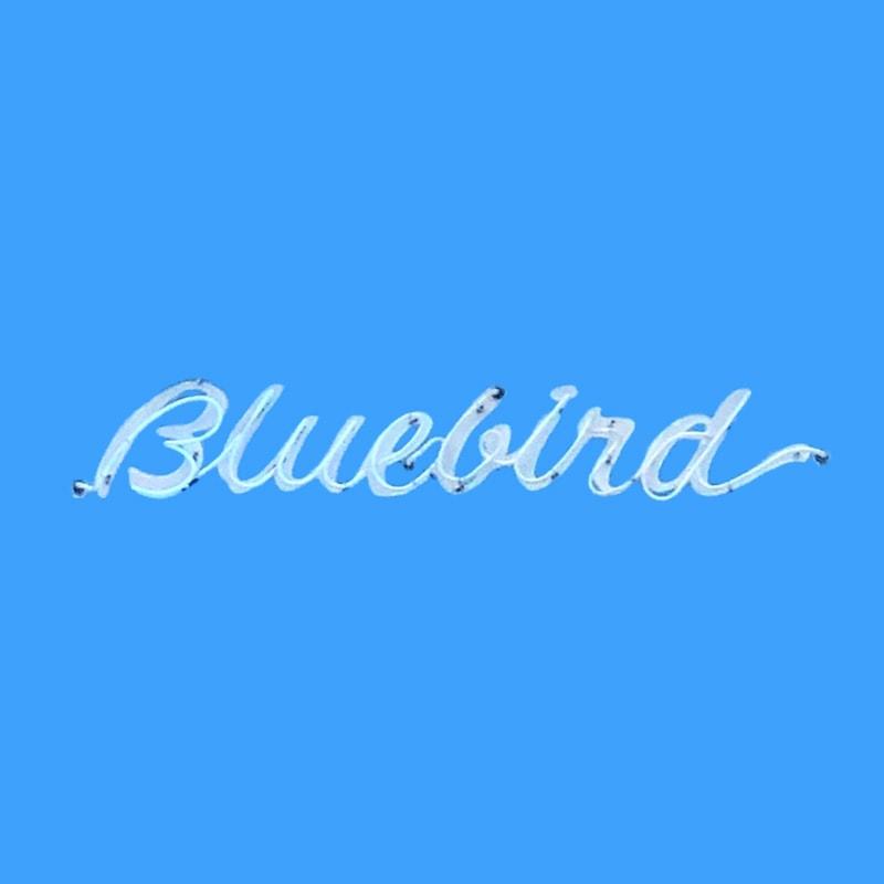 Bluebird Bloomington